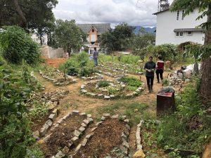 bee garden dalat