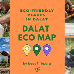 Eco-friendly tourism in Dalat