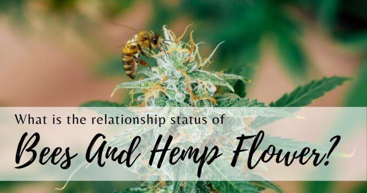 bees and hemp
